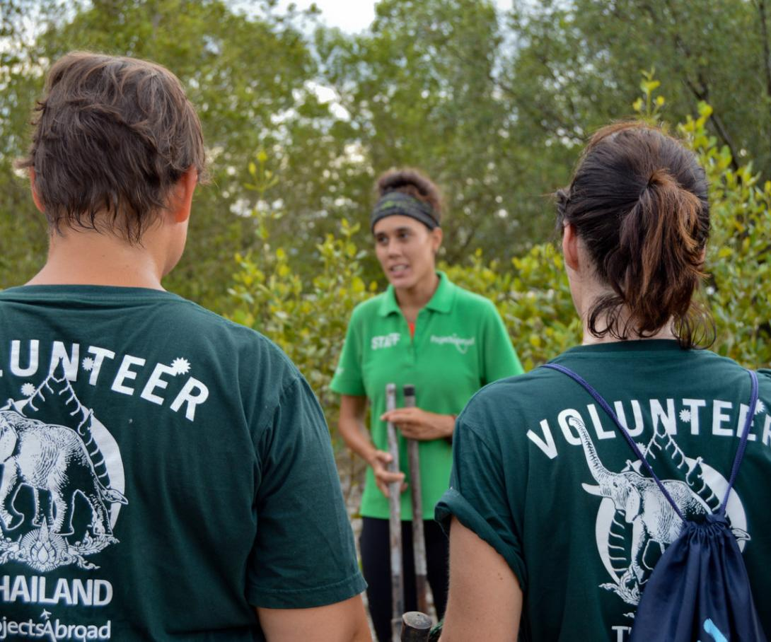 A group of volunteers in Asia listen to a Projects Staff member explain mangrove reforestation techniques in Thailand.